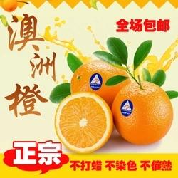 进口橙 2只约1斤