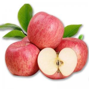 一级红富士苹果两只约500g