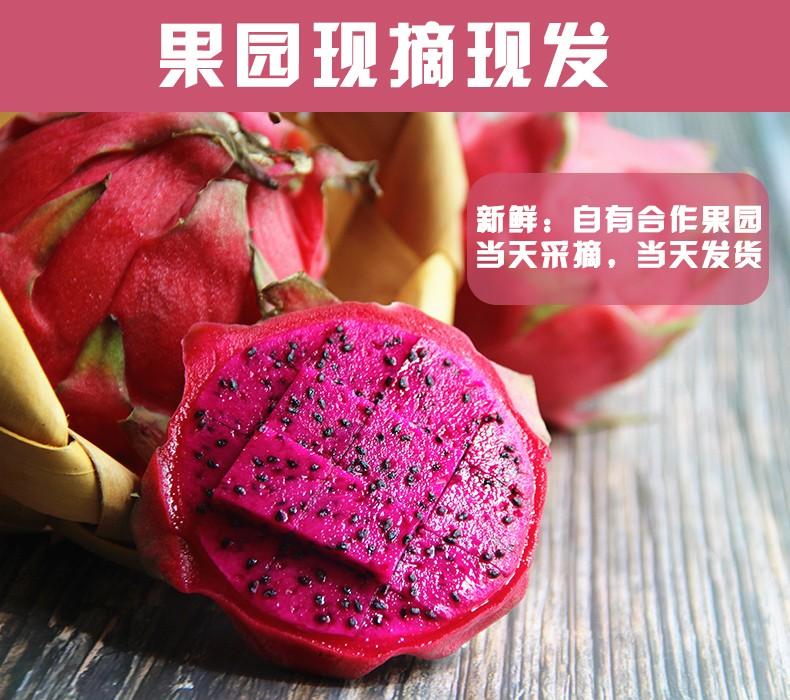【特价】红心火龙果约500g